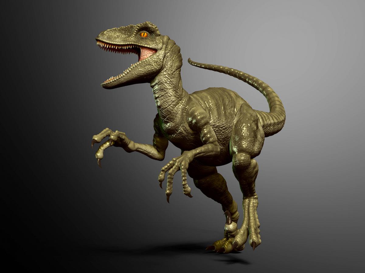 Велоцираптор: описание динозавра с картинками