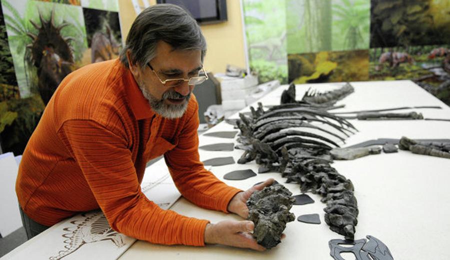 Работа палеонтологов