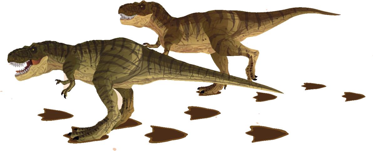 Каменные следы динозавров