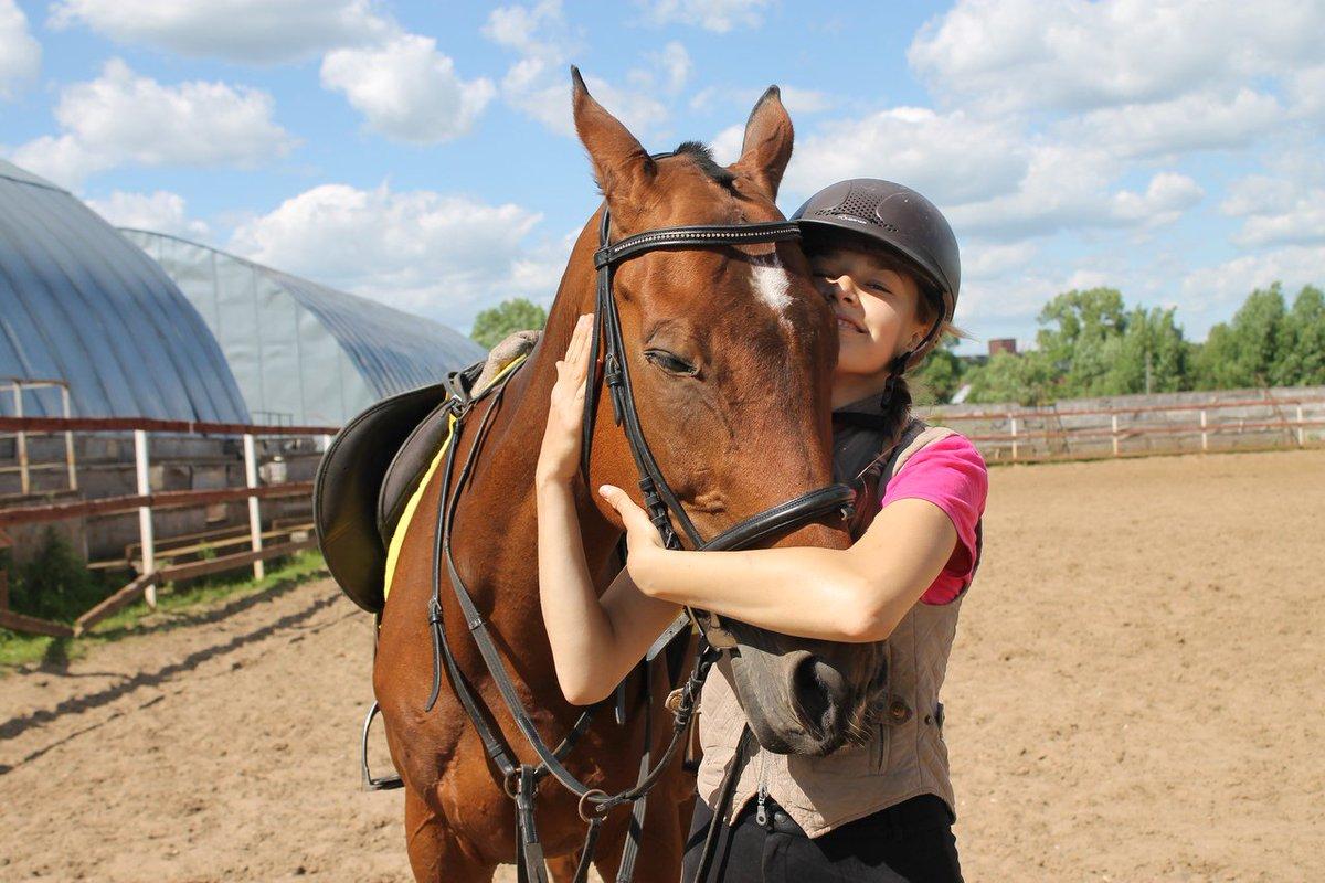 Иппотерапия - лечебная верховая езда на лошади: польза и противопоказания