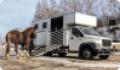 Снаряжение для перевозки лошади
