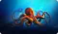 Осьминоги и их опасность для человека
